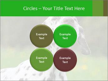 Barking dog PowerPoint Template - Slide 38