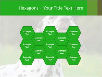 Barking dog PowerPoint Template - Slide 44