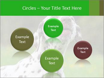 Barking dog PowerPoint Template - Slide 77