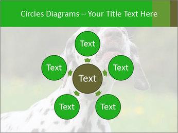 Barking dog PowerPoint Template - Slide 78