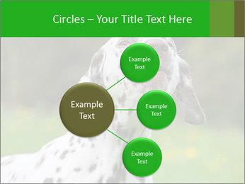 Barking dog PowerPoint Template - Slide 79