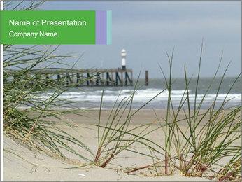 Marram Grass growing PowerPoint Templates - Slide 1