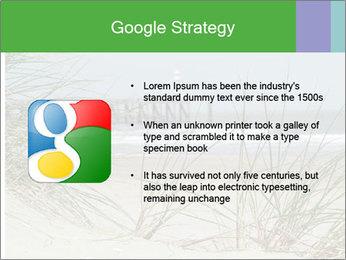 Marram Grass growing PowerPoint Templates - Slide 10