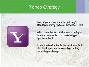Marram Grass growing PowerPoint Templates - Slide 11
