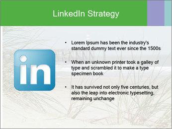 Marram Grass growing PowerPoint Templates - Slide 12