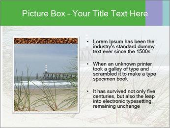 Marram Grass growing PowerPoint Templates - Slide 13