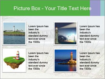 Marram Grass growing PowerPoint Templates - Slide 14