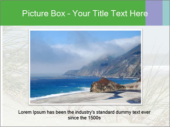 Marram Grass growing PowerPoint Templates - Slide 16
