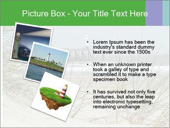 Marram Grass growing PowerPoint Templates - Slide 17