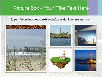 Marram Grass growing PowerPoint Templates - Slide 19