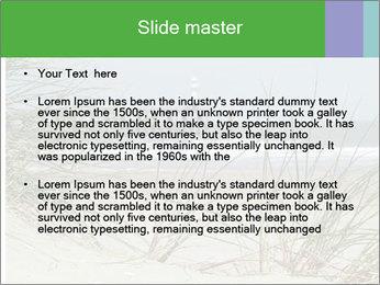 Marram Grass growing PowerPoint Templates - Slide 2