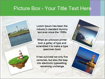 Marram Grass growing PowerPoint Templates - Slide 24