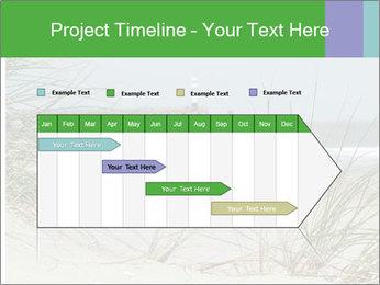 Marram Grass growing PowerPoint Templates - Slide 25