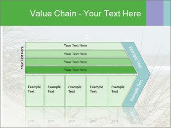 Marram Grass growing PowerPoint Templates - Slide 27