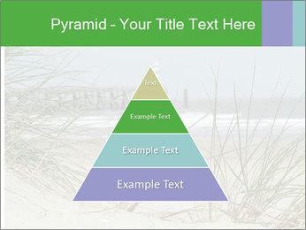 Marram Grass growing PowerPoint Templates - Slide 30