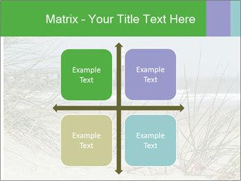 Marram Grass growing PowerPoint Templates - Slide 37