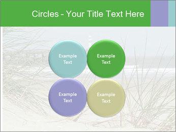 Marram Grass growing PowerPoint Templates - Slide 38