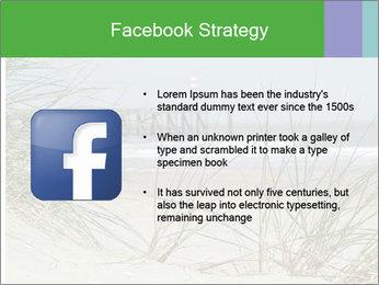 Marram Grass growing PowerPoint Templates - Slide 6