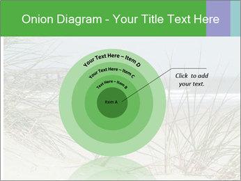 Marram Grass growing PowerPoint Templates - Slide 61