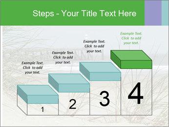 Marram Grass growing PowerPoint Templates - Slide 64