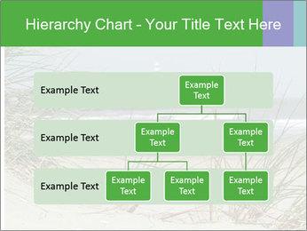 Marram Grass growing PowerPoint Templates - Slide 67