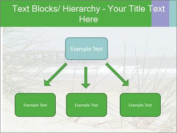 Marram Grass growing PowerPoint Templates - Slide 69