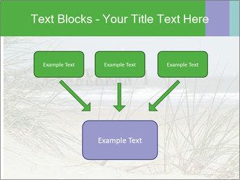 Marram Grass growing PowerPoint Templates - Slide 70