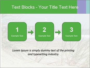 Marram Grass growing PowerPoint Templates - Slide 71