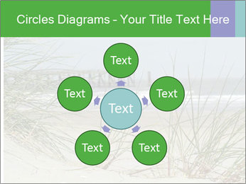 Marram Grass growing PowerPoint Templates - Slide 78