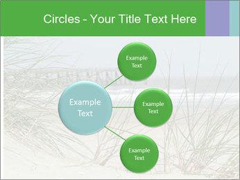 Marram Grass growing PowerPoint Templates - Slide 79