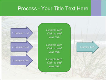 Marram Grass growing PowerPoint Templates - Slide 85