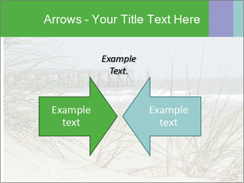 Marram Grass growing PowerPoint Templates - Slide 90