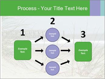 Marram Grass growing PowerPoint Templates - Slide 92