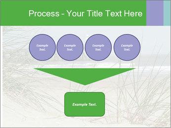 Marram Grass growing PowerPoint Templates - Slide 93