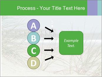 Marram Grass growing PowerPoint Templates - Slide 94