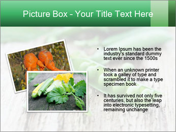 Young fresh juicy pods PowerPoint Templates - Slide 20