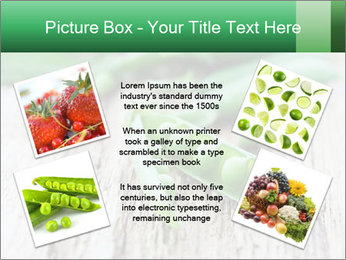 Young fresh juicy pods PowerPoint Templates - Slide 24