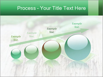Young fresh juicy pods PowerPoint Templates - Slide 87