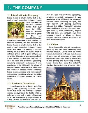 0000094321 Word Template - Page 3
