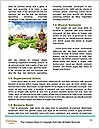 0000094321 Word Templates - Page 4