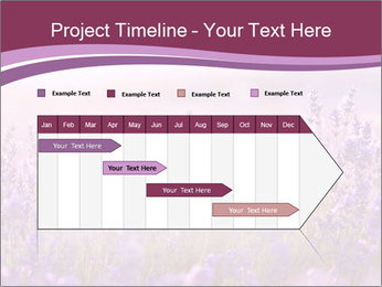 Lavender flowers PowerPoint Templates - Slide 25