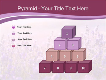 Lavender flowers PowerPoint Templates - Slide 31