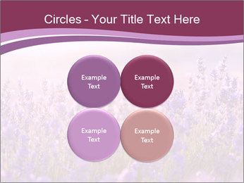 Lavender flowers PowerPoint Templates - Slide 38