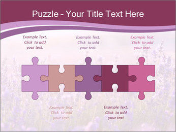 Lavender flowers PowerPoint Templates - Slide 41