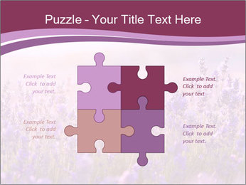 Lavender flowers PowerPoint Templates - Slide 43