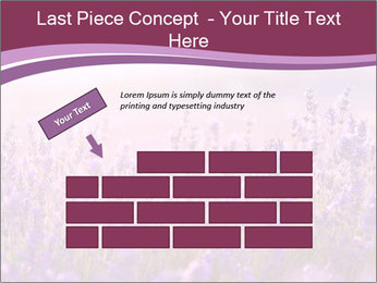 Lavender flowers PowerPoint Templates - Slide 46