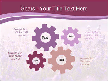 Lavender flowers PowerPoint Templates - Slide 47