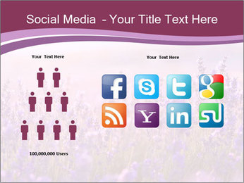 Lavender flowers PowerPoint Templates - Slide 5