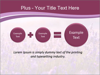 Lavender flowers PowerPoint Templates - Slide 75