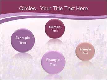 Lavender flowers PowerPoint Templates - Slide 77